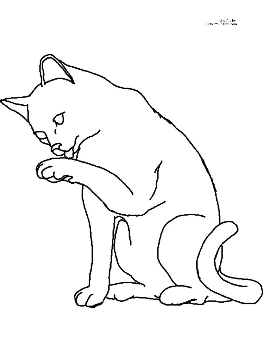warrior cat coloring sheets warrior cat coloring pages to download and print for free coloring cat warrior sheets