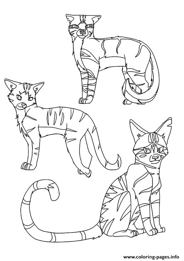 warrior cat coloring sheets warrior cat coloring pages to download and print for free warrior coloring cat sheets