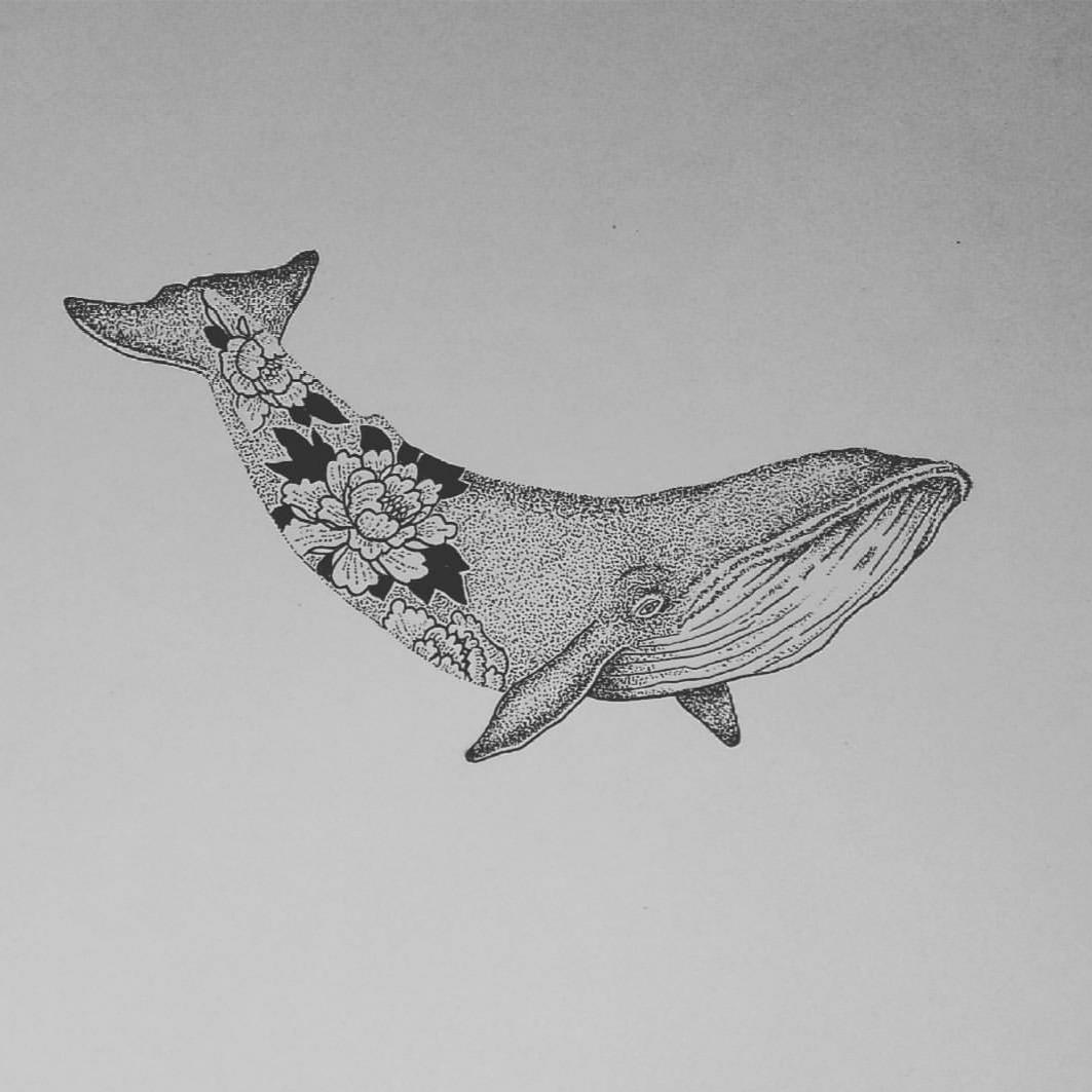 whale drawing killer whale by jarwena on deviantart whale drawing