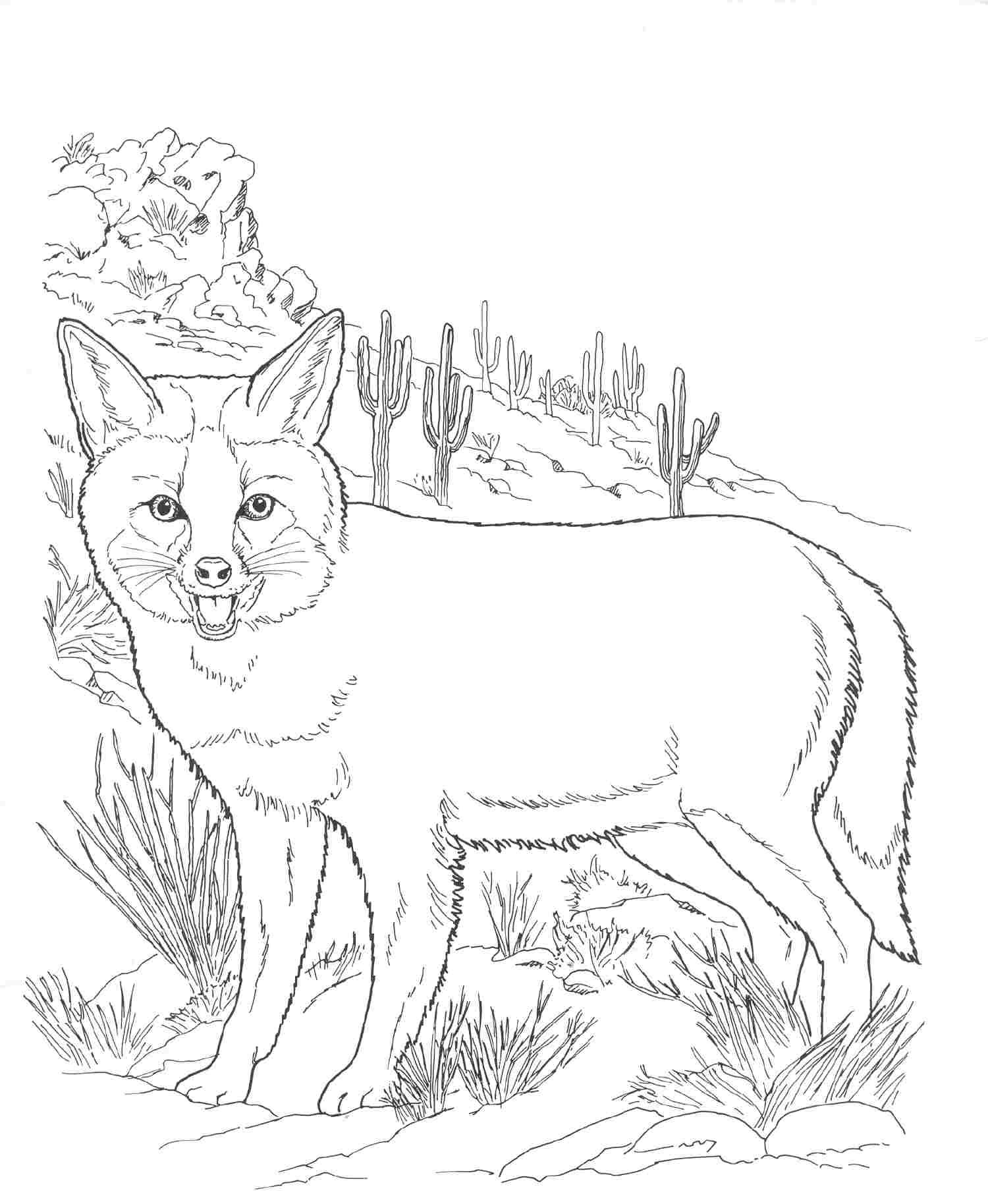 wild animal for coloring 30 free printable geometric animal coloring pages the coloring for wild animal