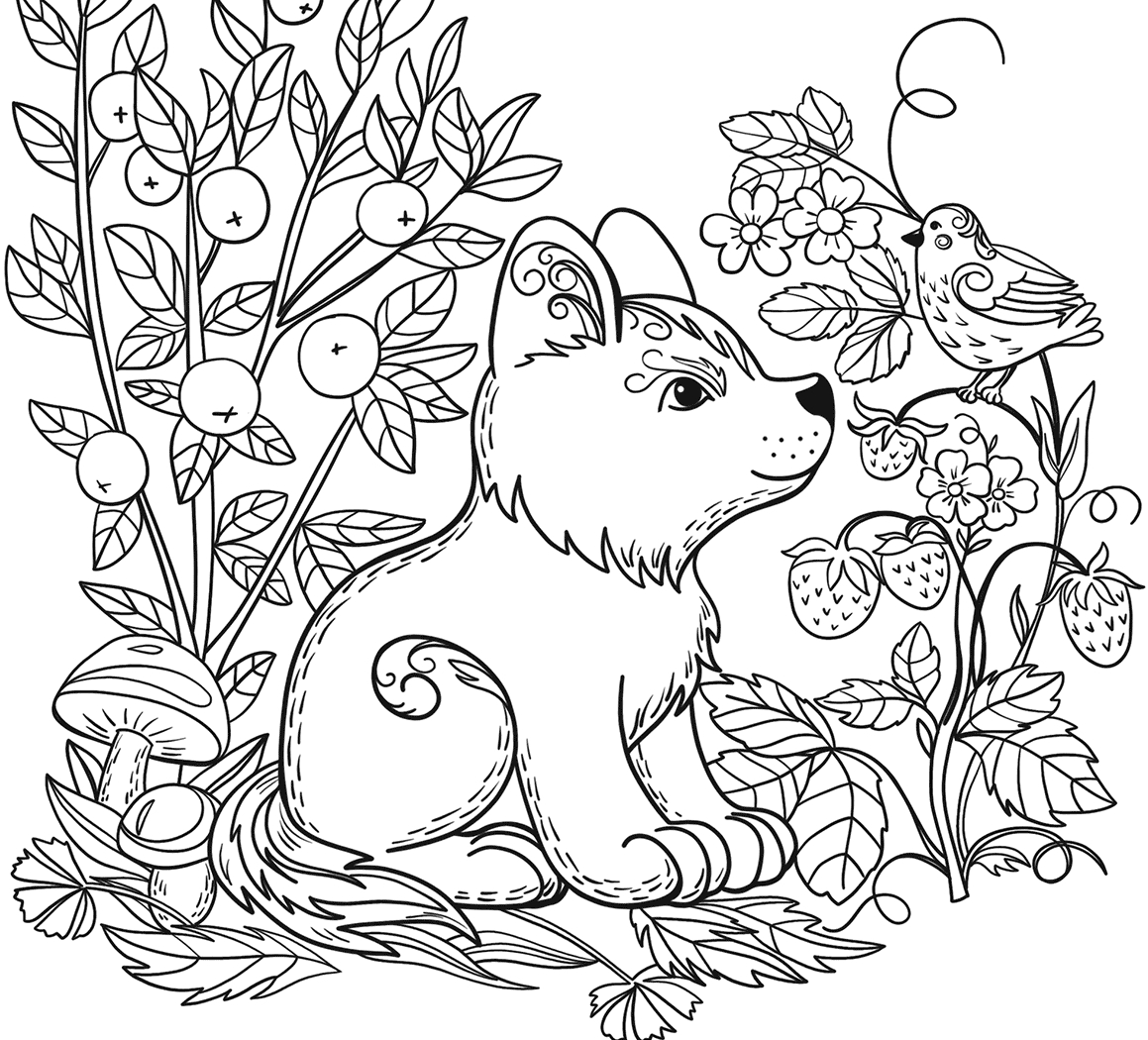 wild animal for coloring zoo animals coloring pages best coloring pages for kids coloring animal wild for