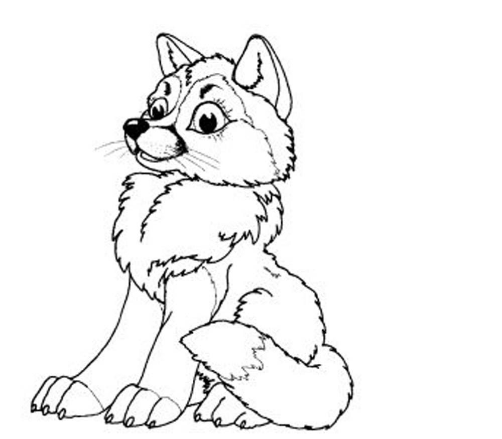 wolf pictures to colour print download wolf coloring pages theme to pictures wolf colour