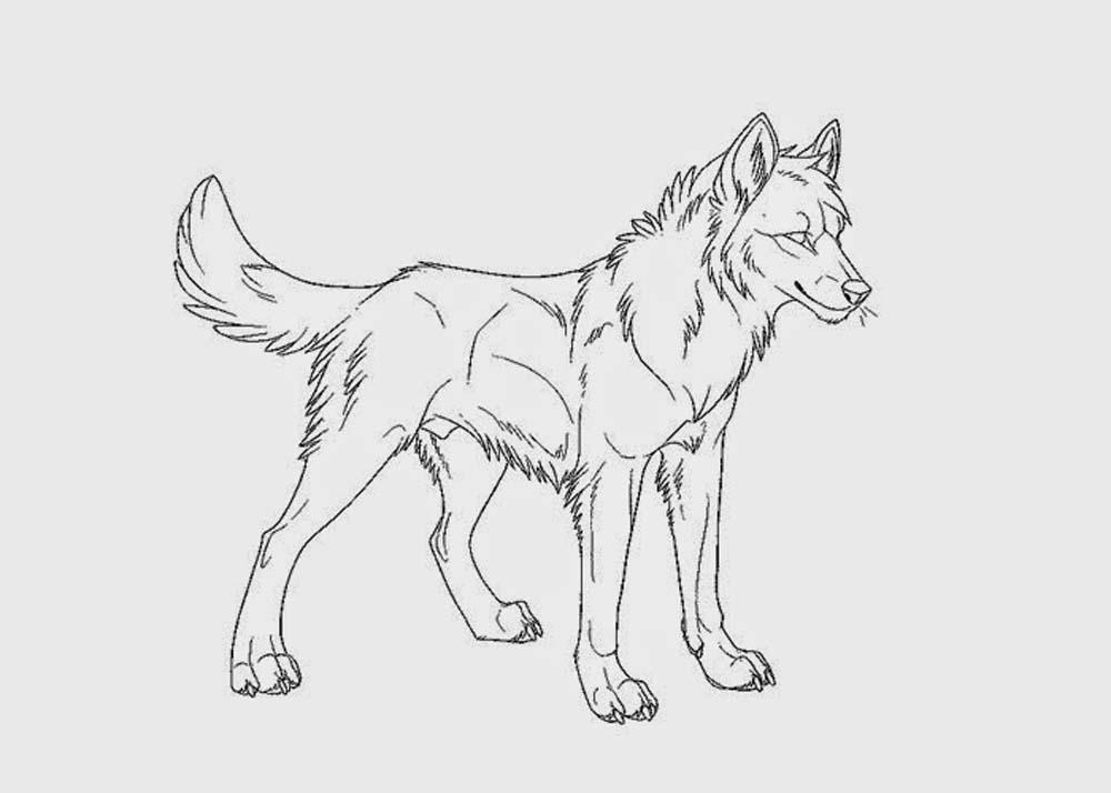 wolf pictures to colour print download wolf coloring pages theme wolf pictures to colour