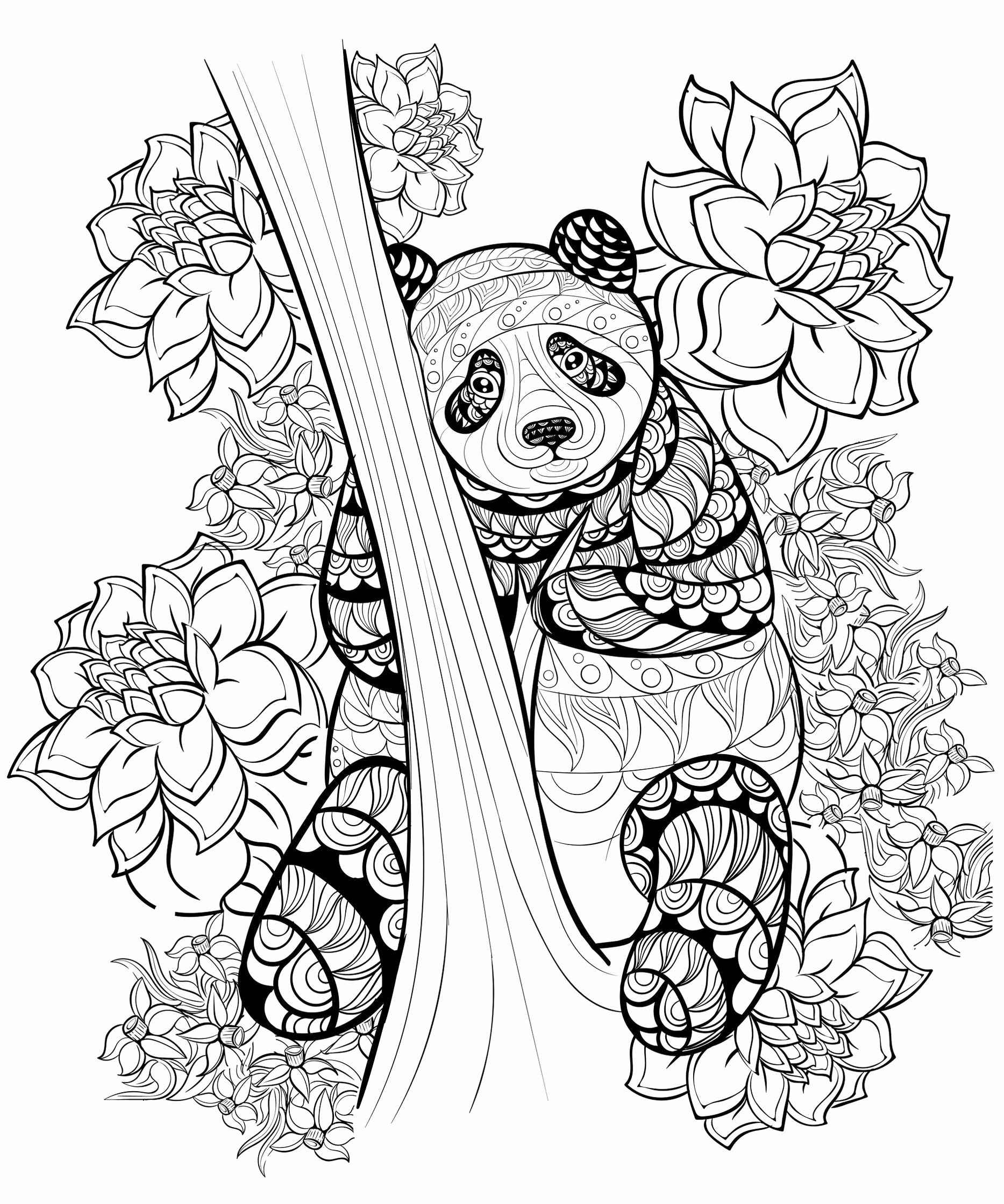 zentangle coloring pages free printable zentangle coloring pages printable at getcoloringscom pages coloring zentangle free printable