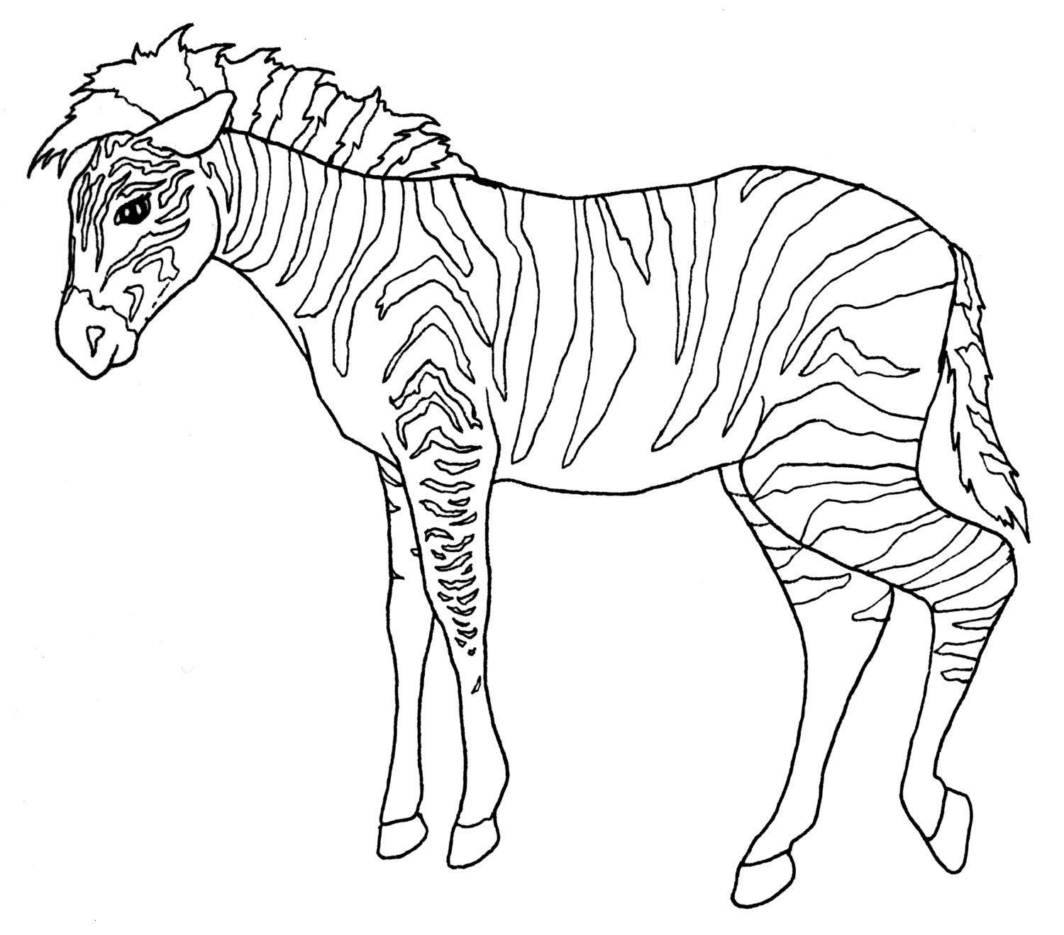 zoo animals coloring pictures digital download zoo animal adult coloring book pages wild coloring pictures animals zoo