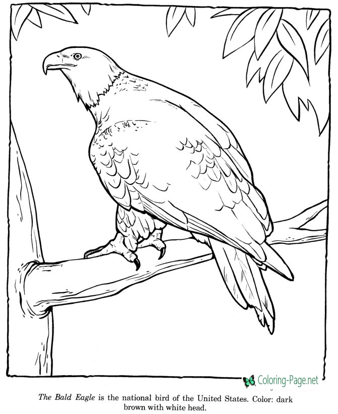 zoo coloring printable zoo coloring pages for kids zoo coloring 1 1