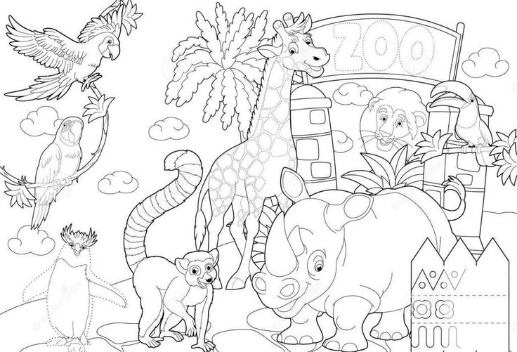 zoo map coloring page baby animals drawing for children zoo coloring pages coloring map zoo page