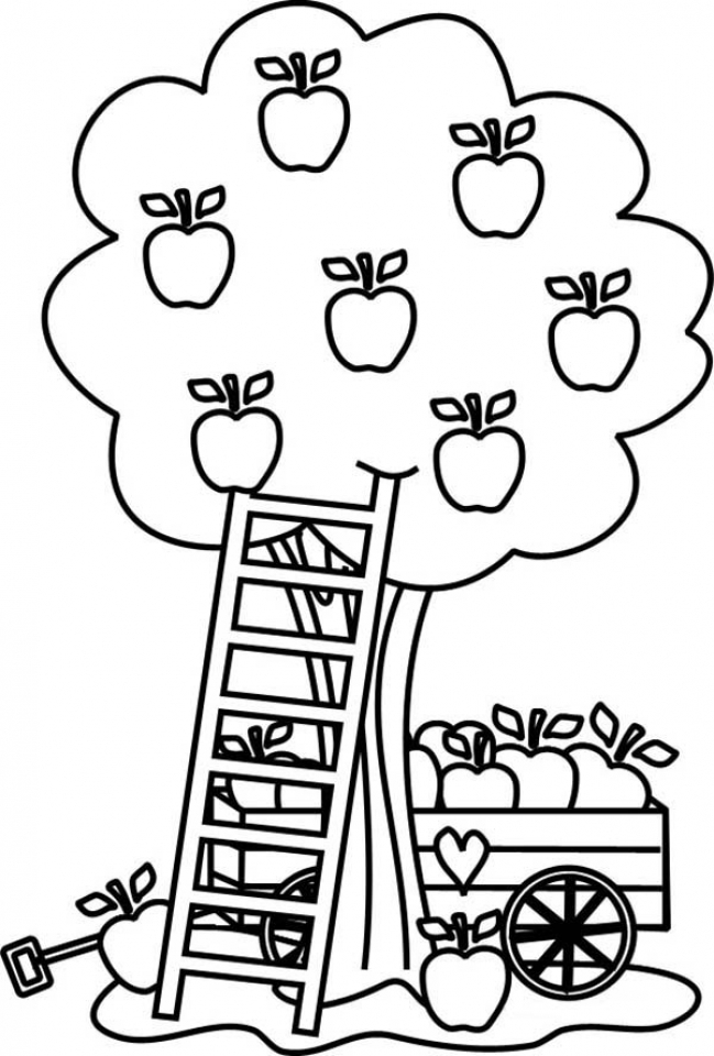 a apple coloring sheet apple coloring pages to download and print for free a sheet apple coloring