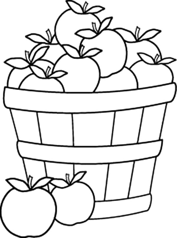 a is for apple coloring page apples in harvest basket line art by lee hansen hoch page coloring for apple is a