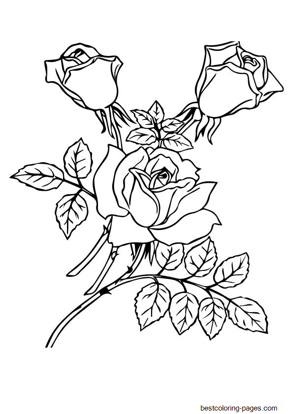 a4 coloring pictures a4 coloring pictures pictures a4 coloring