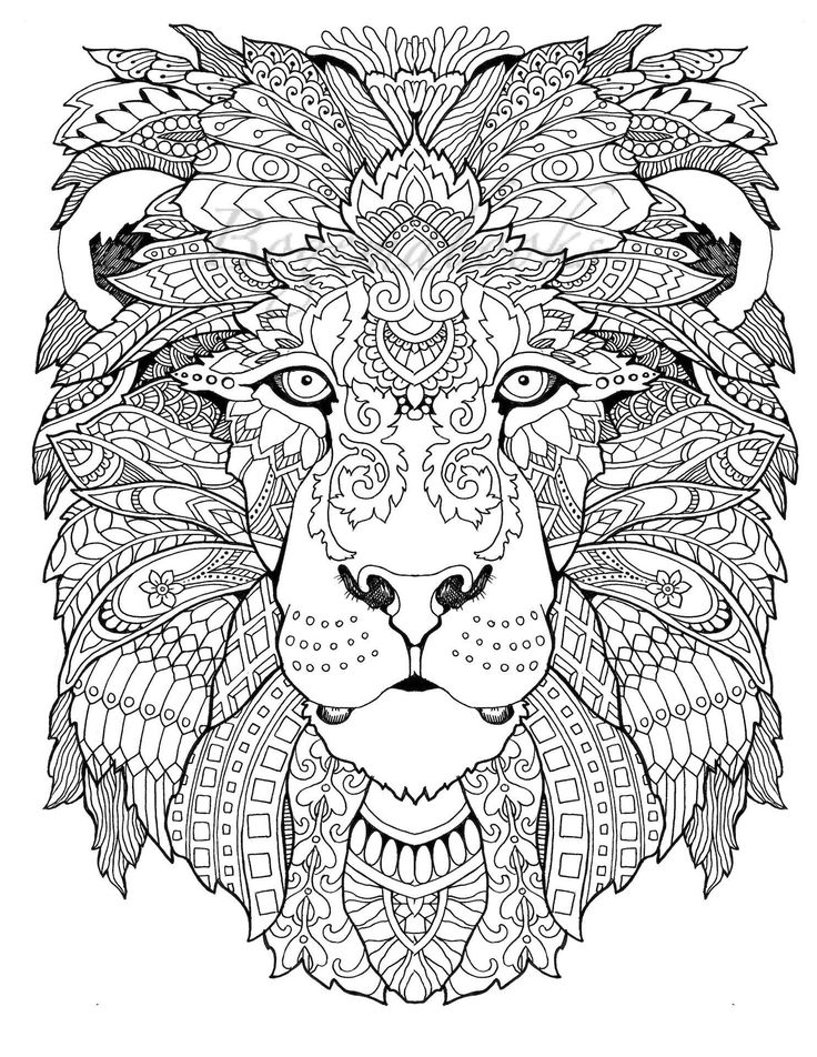 adult coloring pages animals 796 best animal coloring pages for adults images on animals pages coloring adult