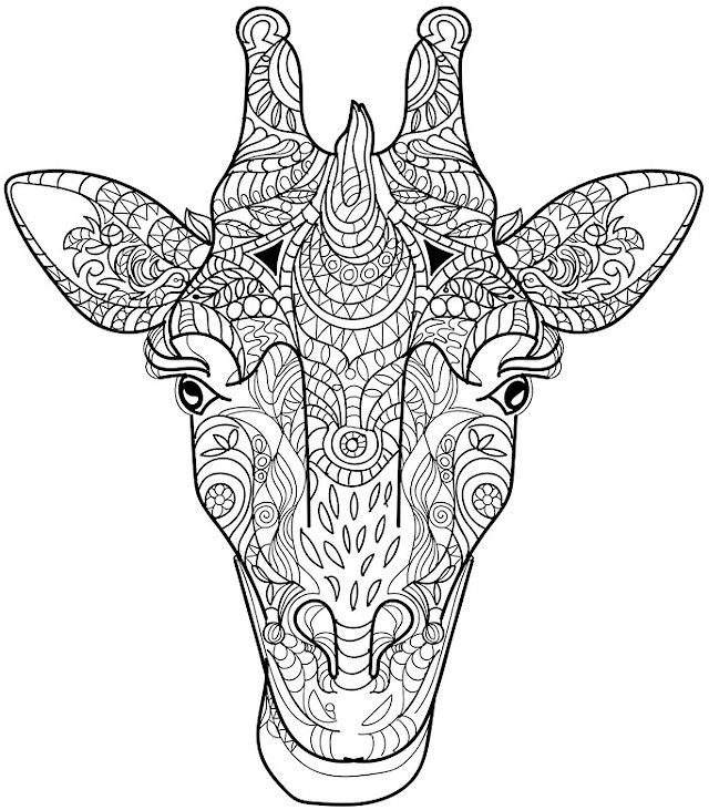 adult coloring pages animals animal coloring pages for adults best coloring pages for pages animals adult coloring