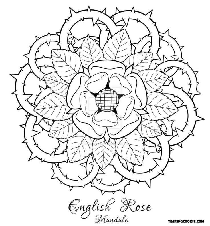 adult coloring pages roses 17 best images about flower coloring on pinterest dovers adult pages coloring roses