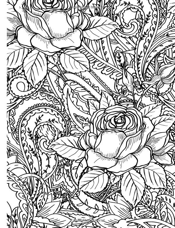 adult coloring pages roses 271 best rose art coloring pages images on pinterest roses coloring pages adult