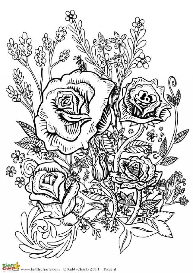 adult coloring pages roses four free flower coloring pages for adults coloring adult pages roses