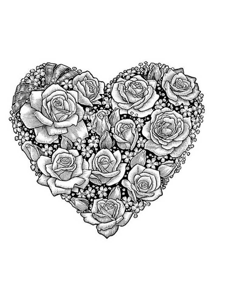 adult coloring pages roses rose coloring pages for adults pages coloring adult roses