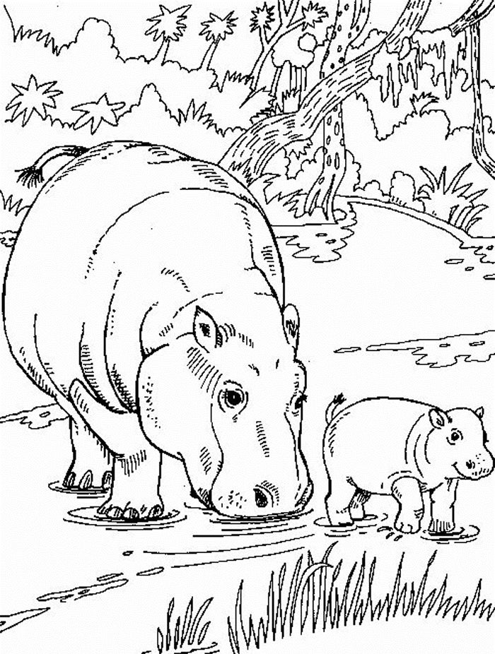 africa animals coloring pages african animal template animal templates free coloring pages africa animals