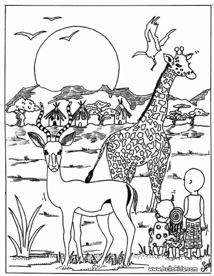 africa animals coloring pages coloring pages african animals coloring pages african pages animals africa coloring