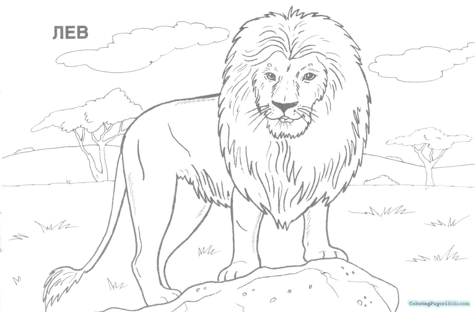 africa animals coloring pages free coloring pages african animals coloring pages for kids pages coloring animals africa