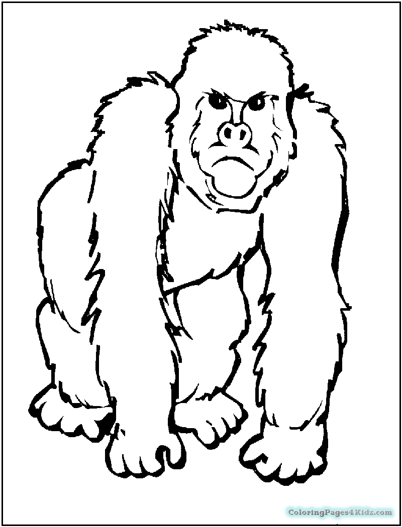 african animals printables african animals coloring page coloringbay animals african printables