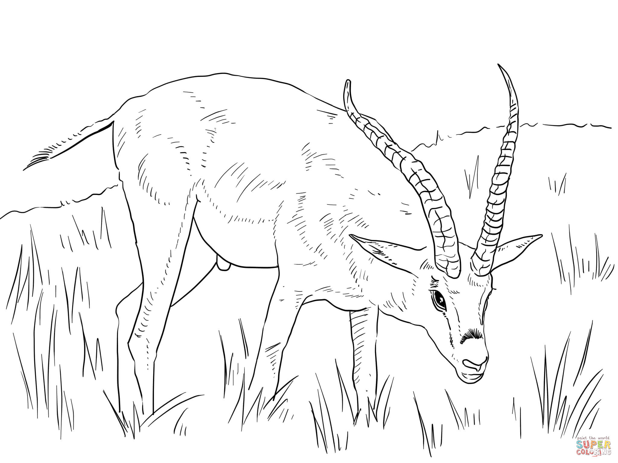 african animals printables african animals coloring page free printable coloring pages african animals printables