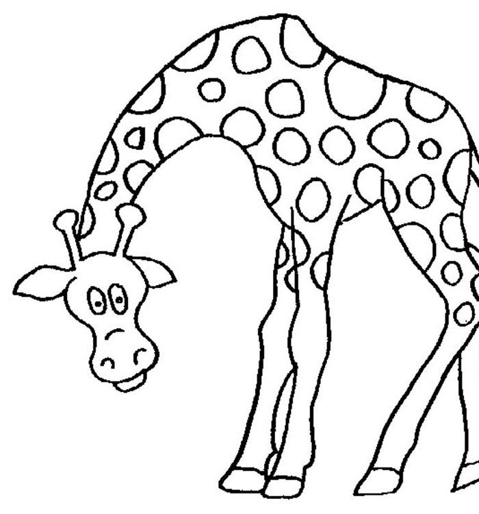 african animals printables african animals coloring pages coloring home printables african animals