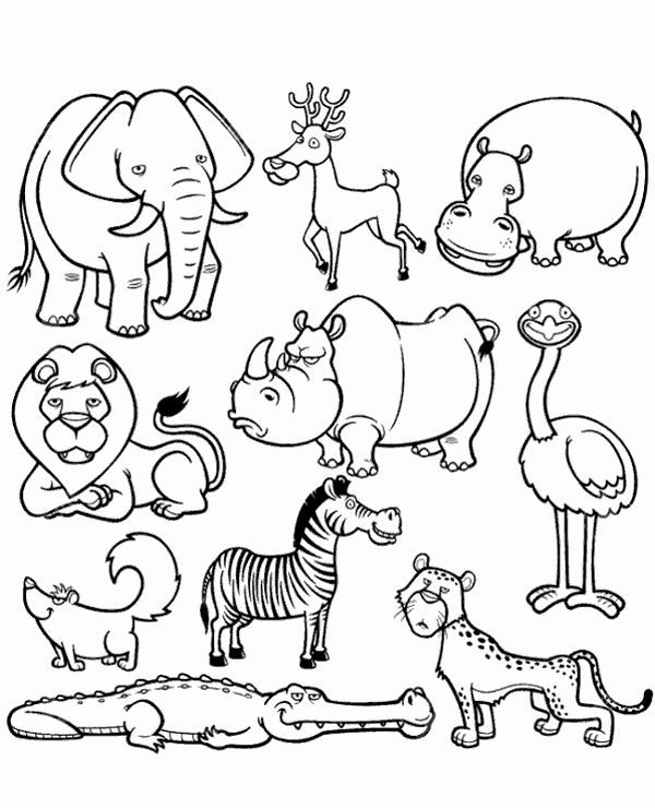 african animals printables african animals coloring pages printable coloring pages animals african printables
