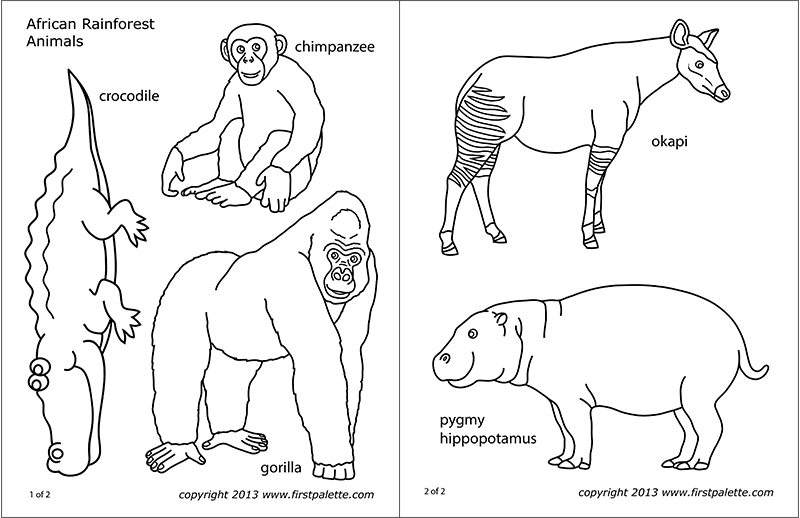 african animals printables african jungle or rainforest animals free printable printables african animals