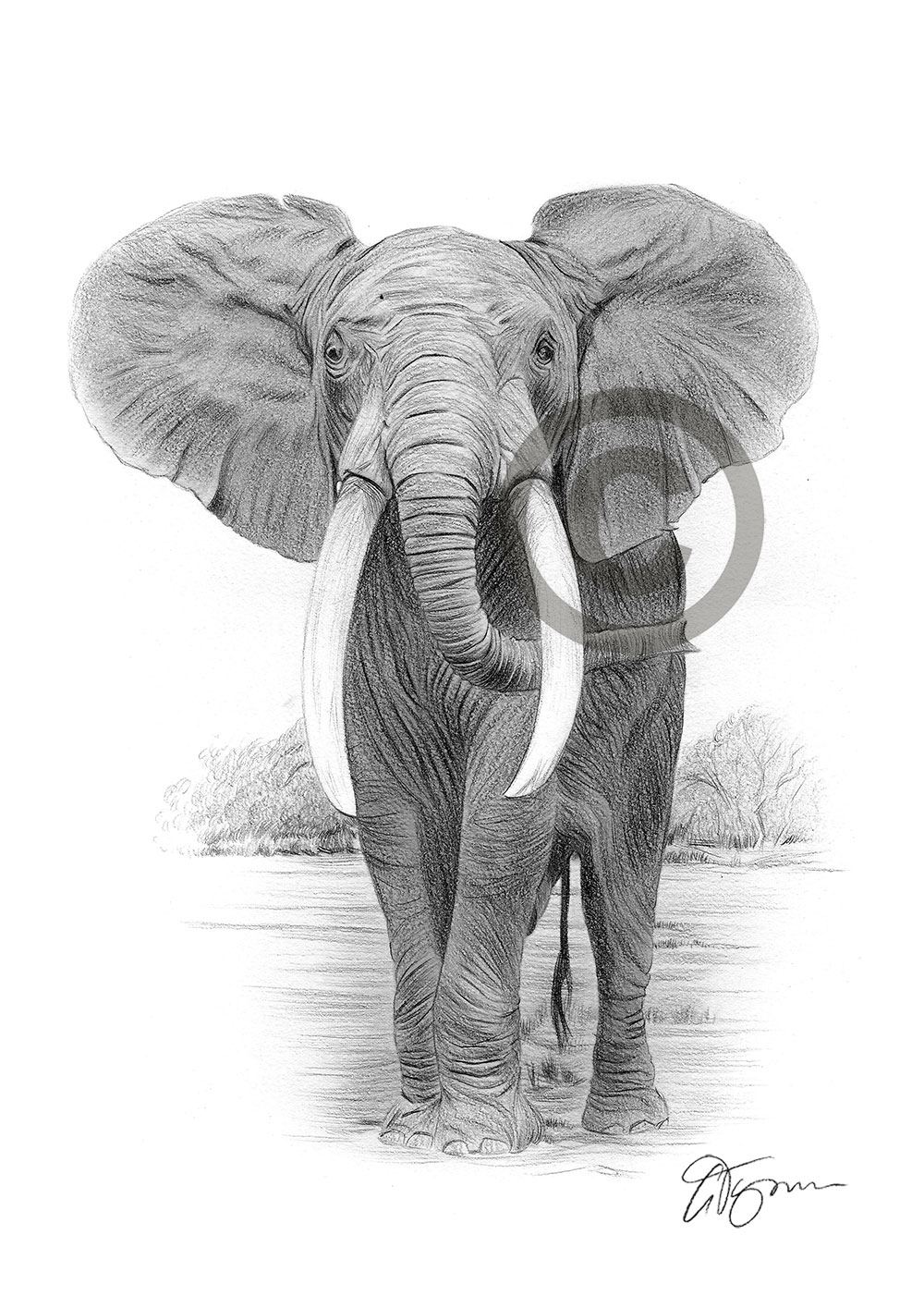 african elephant drawing funny african elephant ivory drawing mandala elephant drawing african elephant