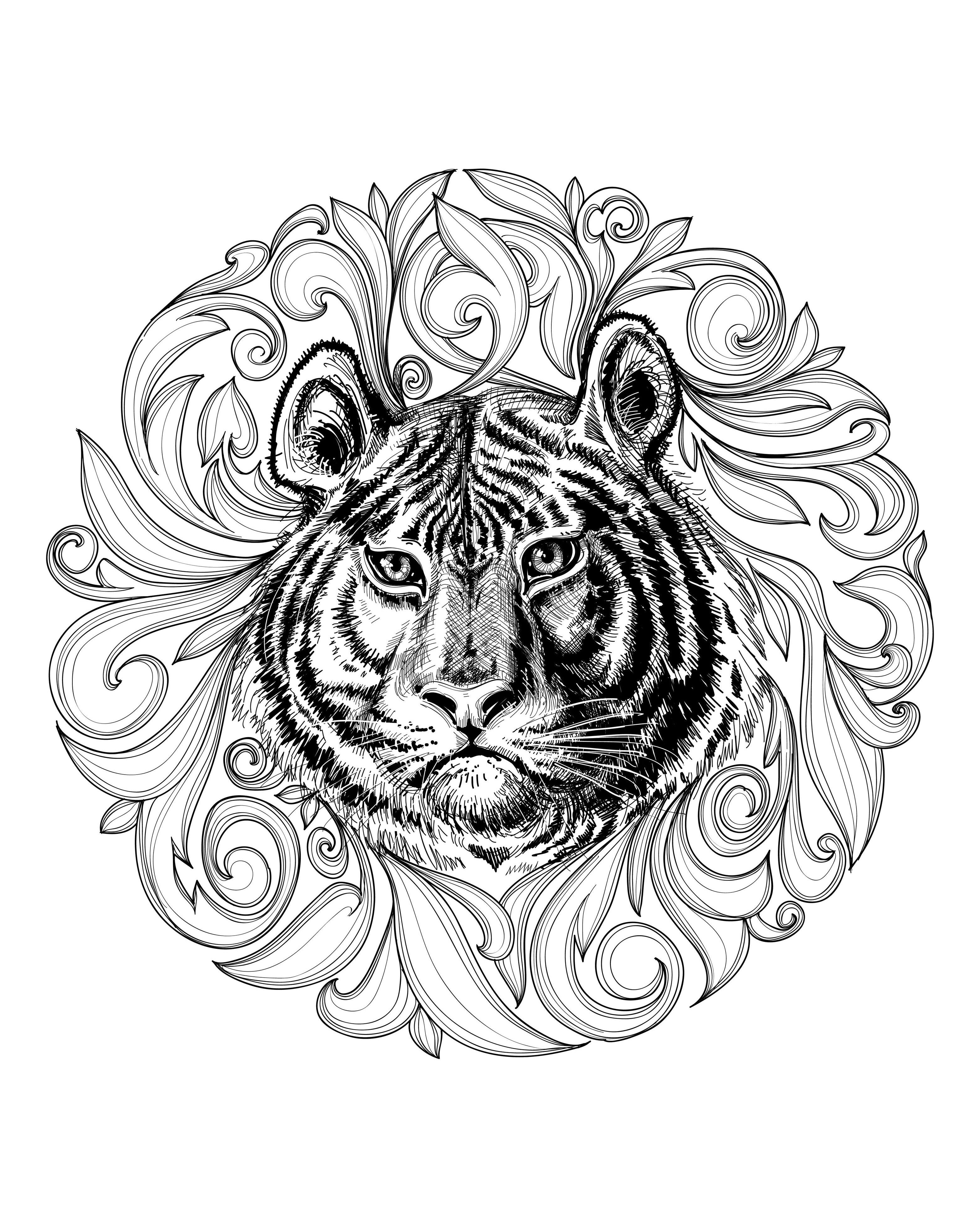 african mandala coloring pages africa lion africa adult coloring pages pages african mandala coloring