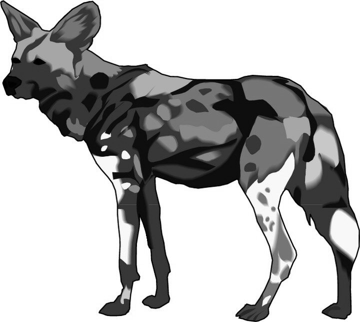 african wild dog coloring page african wild dog coloring page at getcoloringscom free dog coloring african page wild
