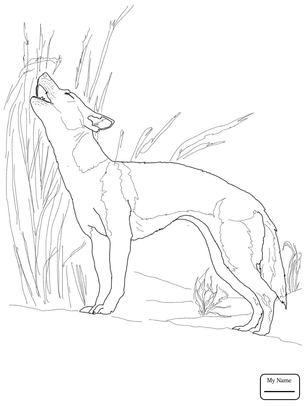 african wild dog coloring page african wild dog or painted hunting dog coloring page coloring african dog wild page