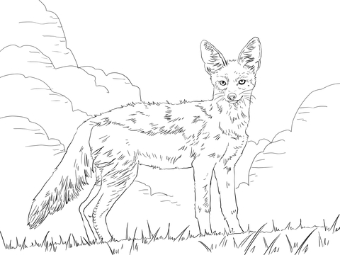 african wild dog coloring page coloring page arctic fox african dog wild page coloring
