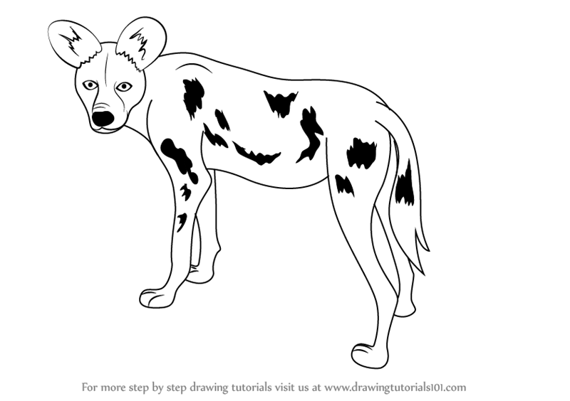 african wild dog coloring page pin by tanya rouillon on art with images dogs african african wild coloring dog page