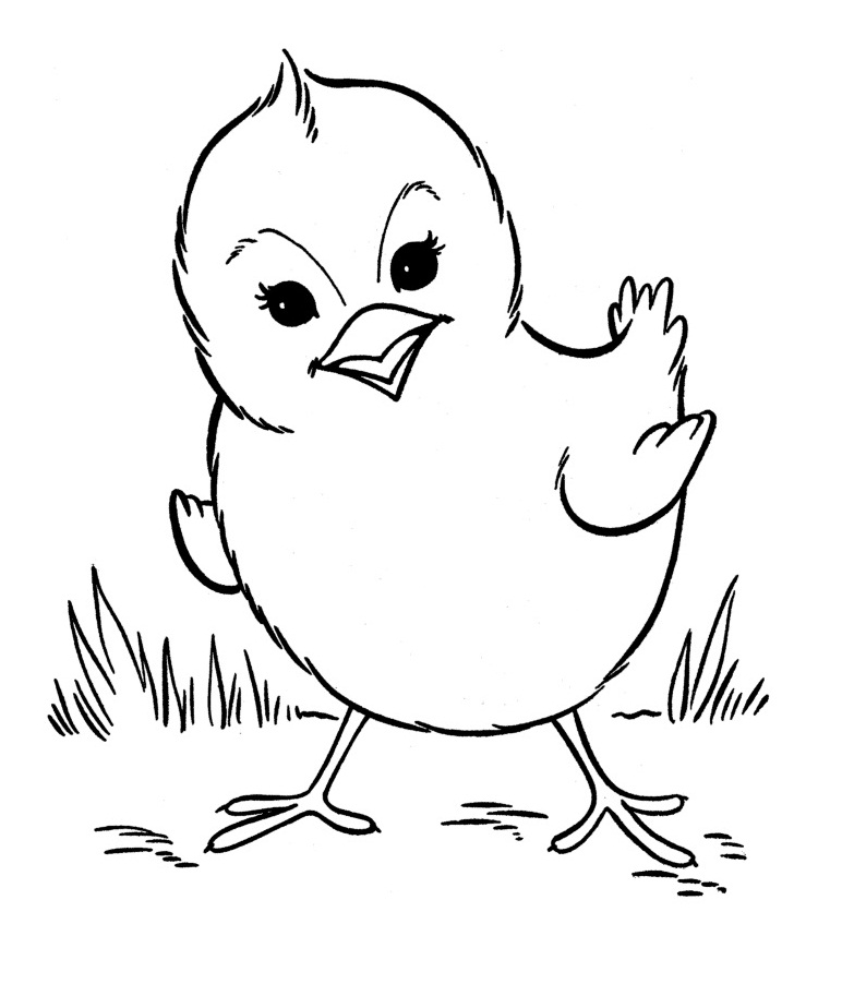 animal coloring pages free free printable farm animal coloring pages for kids coloring free animal pages