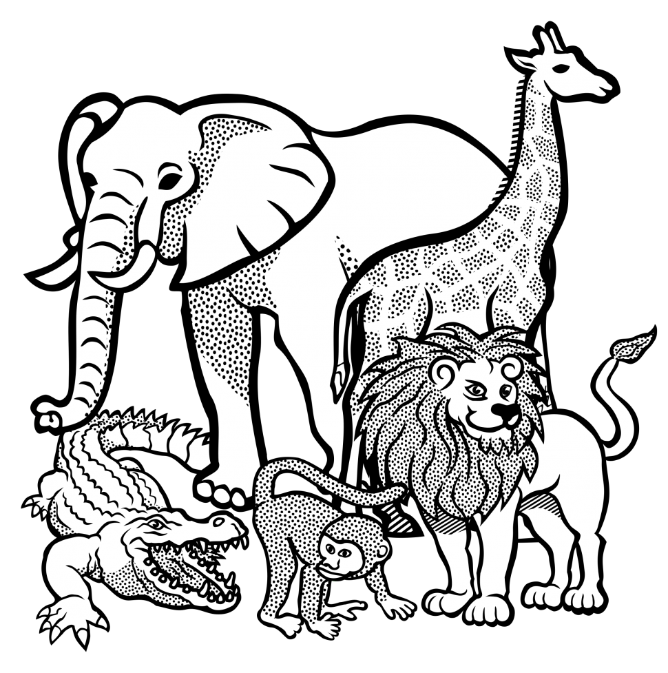 animal outlines to color animals outline pictures and coloring pages for little kids color to animal outlines