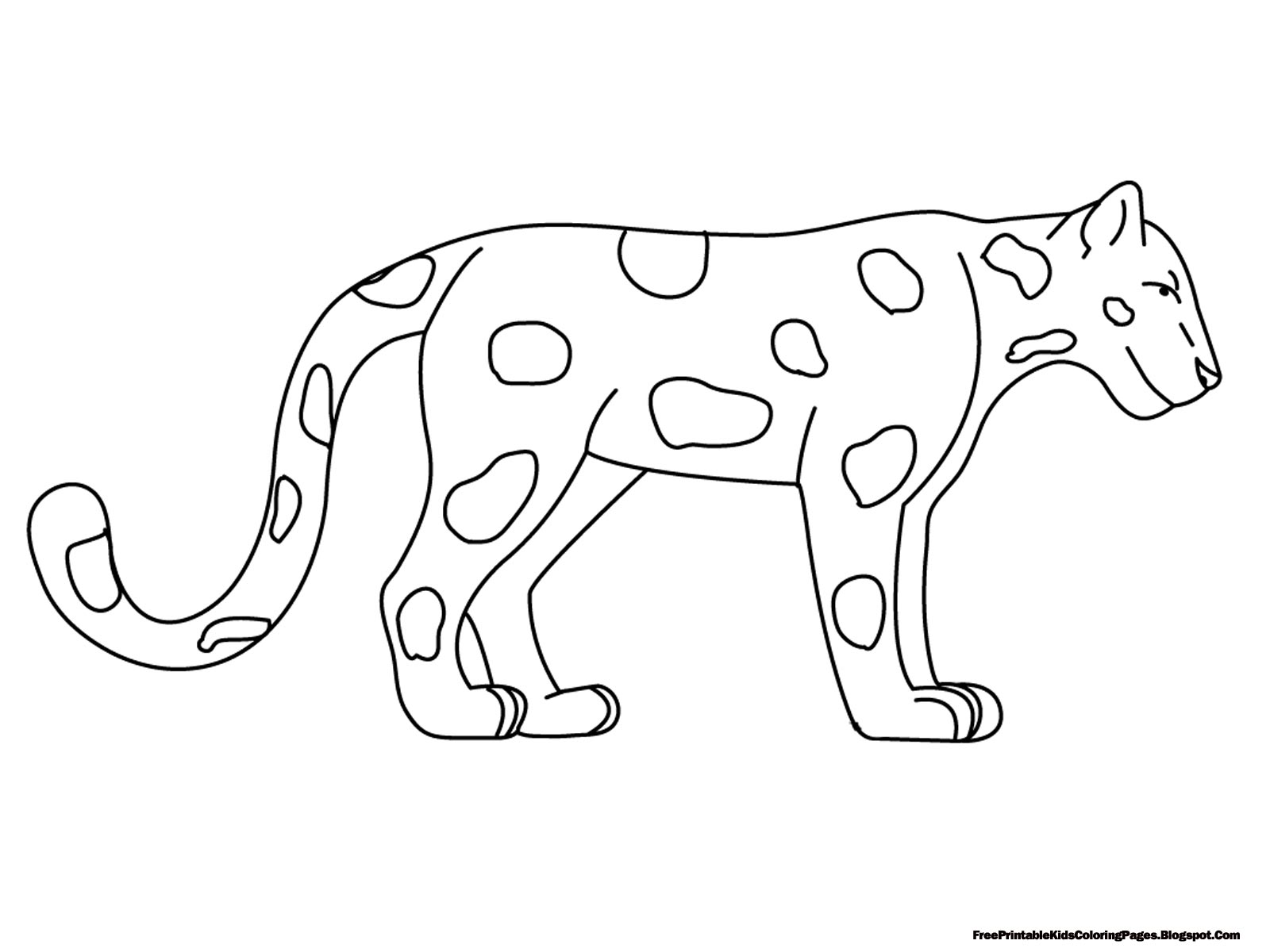 animal outlines to color image result for animal outlines animal outline color animal to outlines