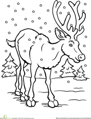 animals in winter coloring pages animals in winter printable worksheets sketch coloring page animals coloring winter pages in