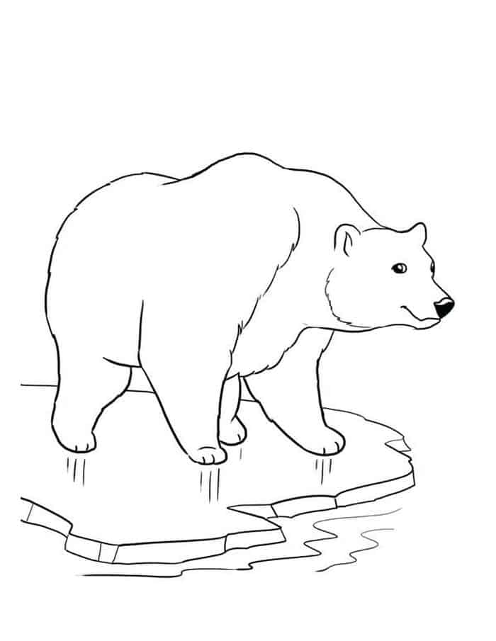 animals in winter coloring pages have fun with winter coloring pages winter coloring pages in animals