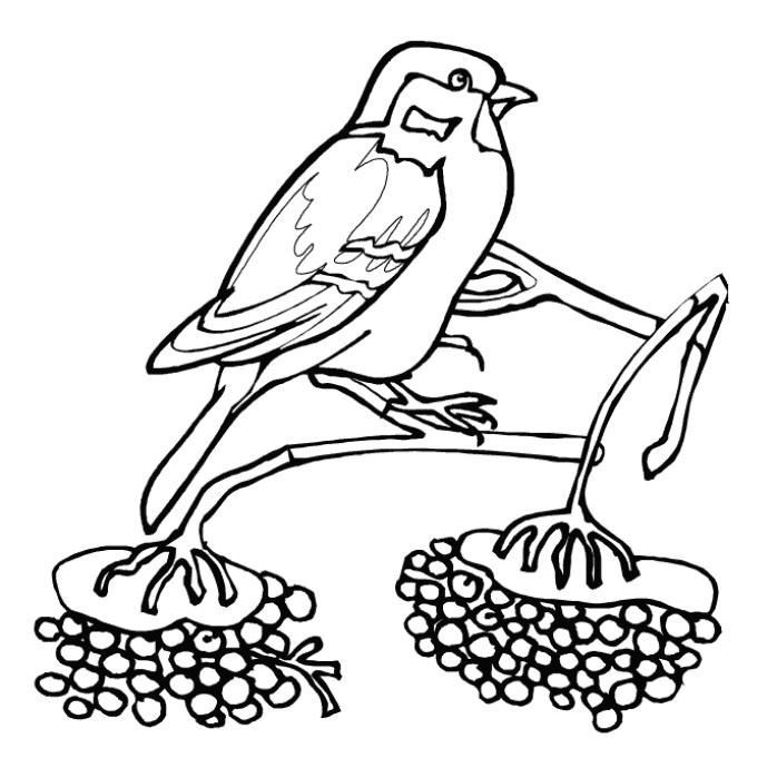 animals in winter coloring pages read moresparrow bird winter animal coloring pages coloring pages winter in animals