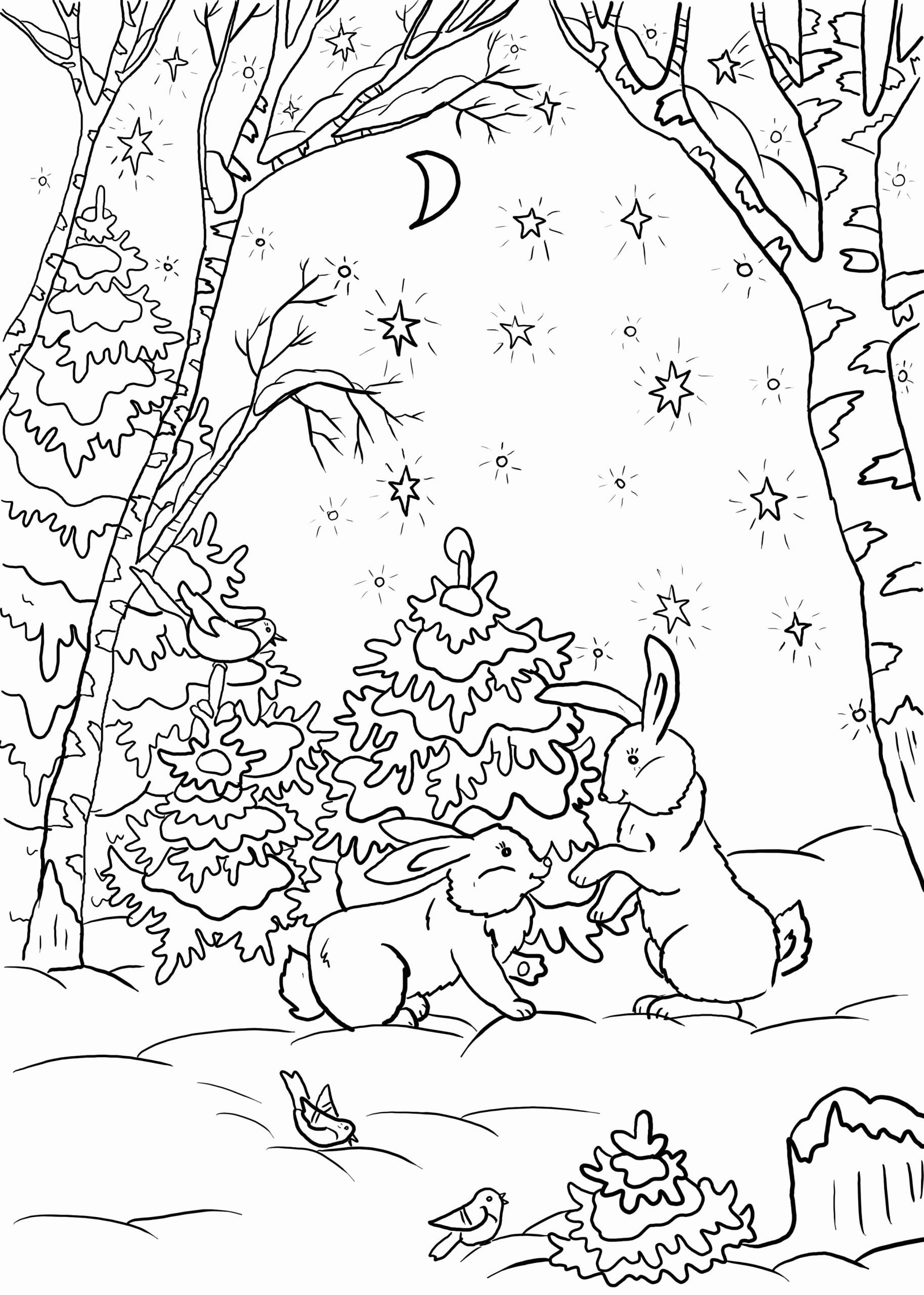 animals in winter coloring pages winter animals coloring pages martin chandra coloring pages pages in animals winter coloring