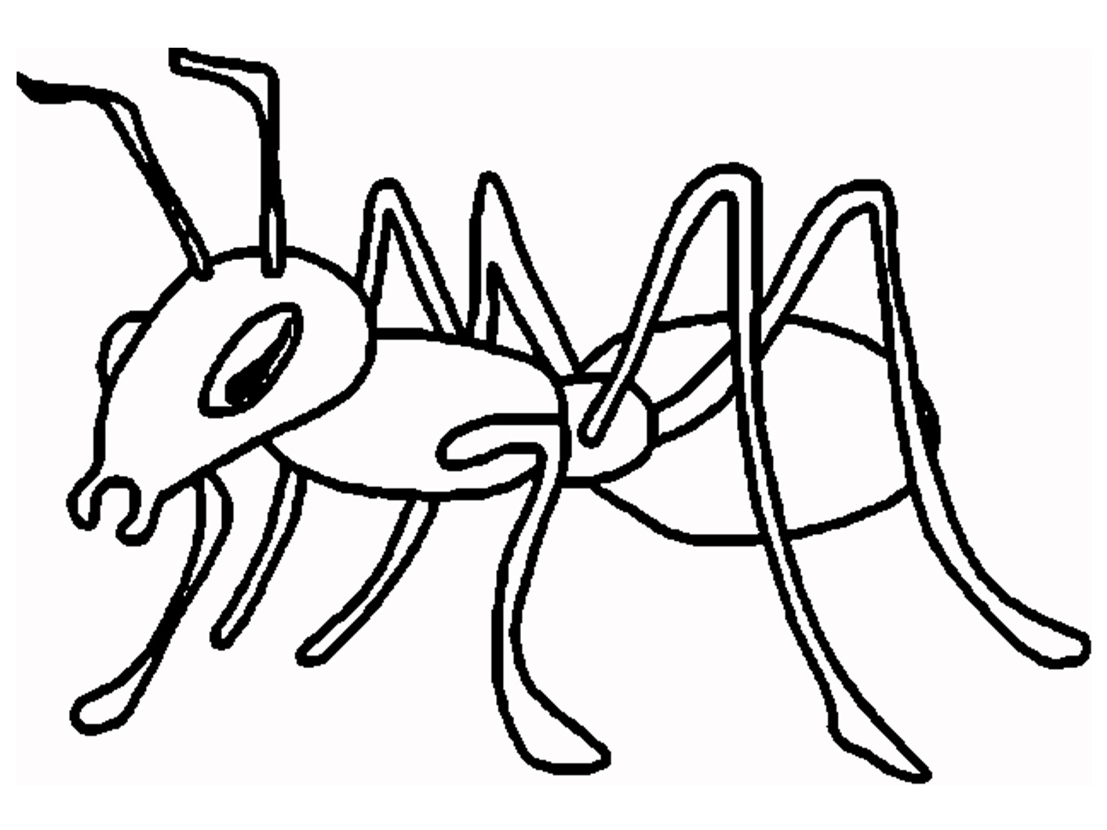 ant picture to color ant coloring download ant coloring for free 2019 ant picture to color