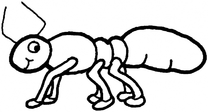ant picture to color ant coloring page download free ant coloring page for to ant picture color