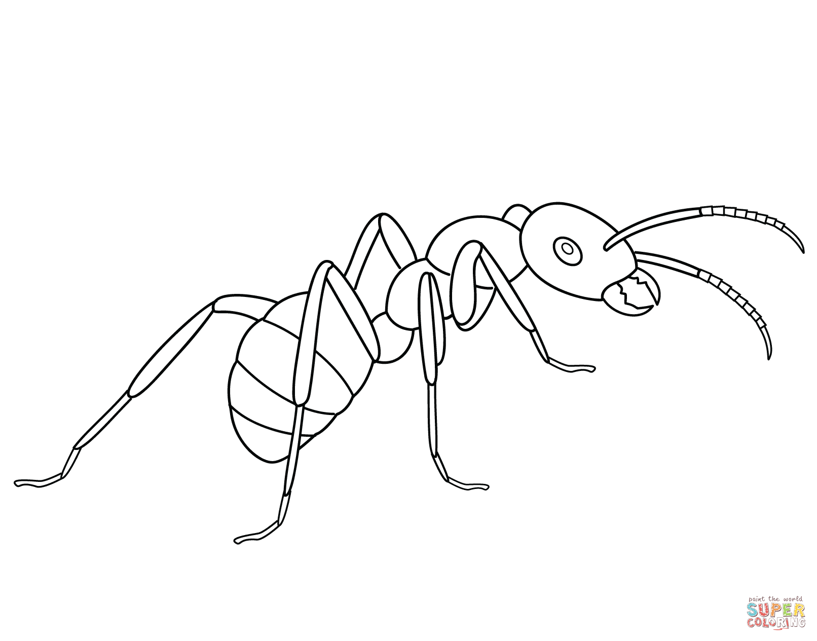 ant picture to color ant coloring page learn about nature to picture color ant