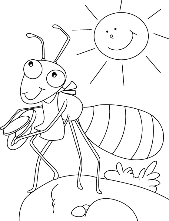 ant picture to color ant outline drawing ant outline coloring page cute ant color picture to ant