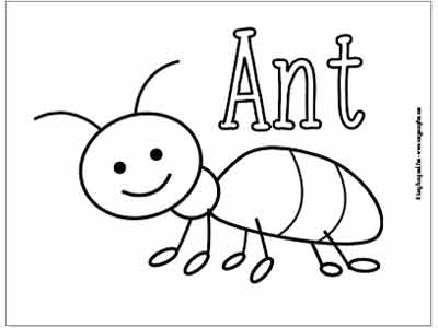 ant picture to color ant picture to color ant color to picture