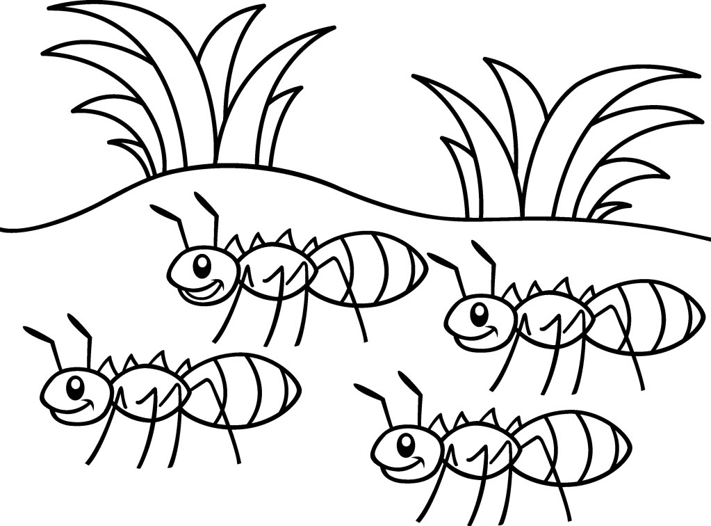 ant picture to color free pictures of ants for kids download free clip art picture ant color to