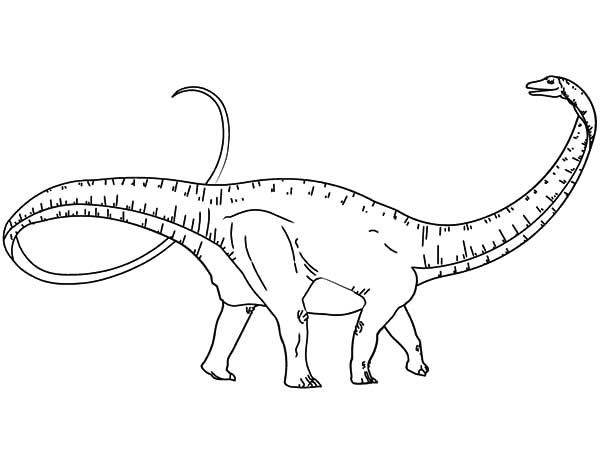 apatosaurus coloring page apatosaurus in the meadow coloring pages best place to color apatosaurus page coloring