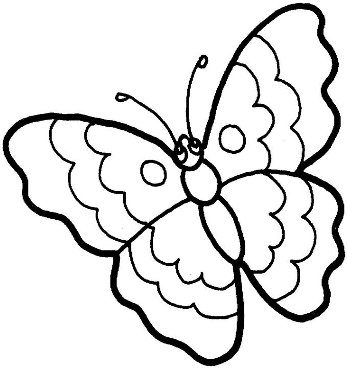 baby butterfly coloring pages butterfly free printable coloring pages butterfly pages coloring baby