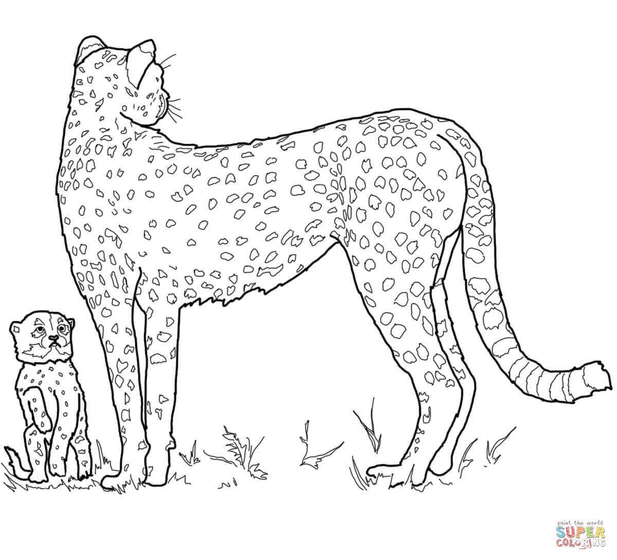baby cheetah coloring pages get this cute baby cheetah coloring pages mt83n coloring cheetah pages baby